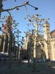 Het Vrijthof Maastricht